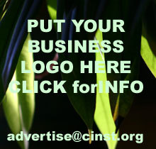 Advertise Here! Click to email Mike :-)