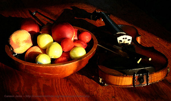 Bowl of fruit with fiddle - photo                     copyright Michael Ludgate